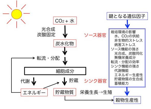 Figure_Agri-bio
