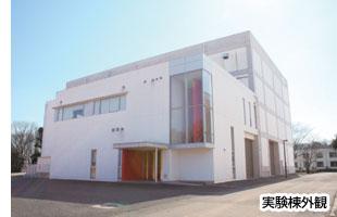 Fire_photo1